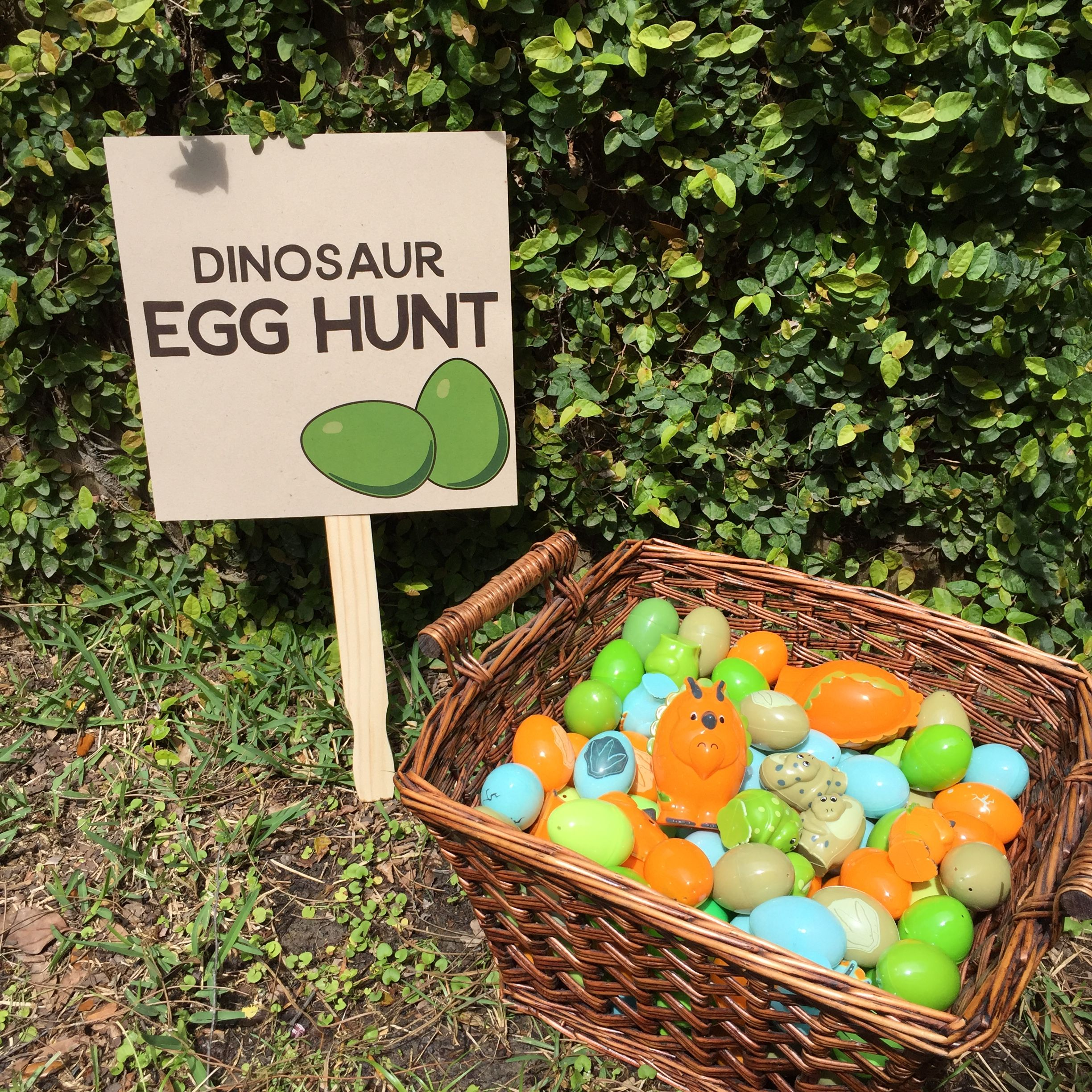 Home (With images) Dinosaur eggs, Egg hunt, 4th birthday