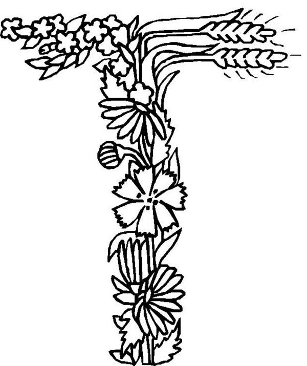 Alphabet Flowers Letter T Coloring Pages