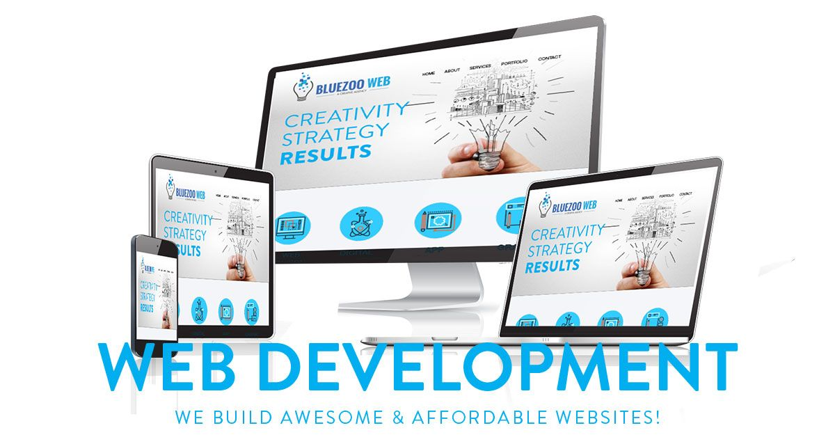 Bluezooweb Is Leading Web Design Website Development Agency With Professional Web Designers In San Ramon Californ Web Design Website Development Concept Web