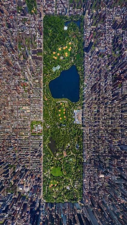 Aerial view of Central Park in New York City.