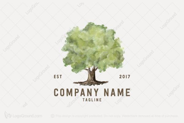 Watercolor Oak Logo Tree Logo Design Roots Logo Tree Logos
