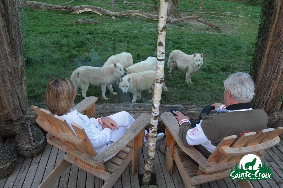 parc animalier sainte croix moselle super dodo au parc possible cabane du trappeur. Black Bedroom Furniture Sets. Home Design Ideas