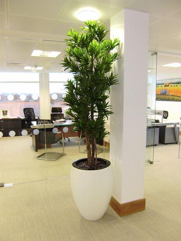 Artificial Plants B Q