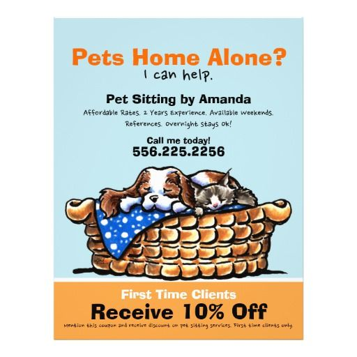 Pet Sitter Sitting Ad Coupon Ckcs Kitten Flyer Zazzle Com Pet