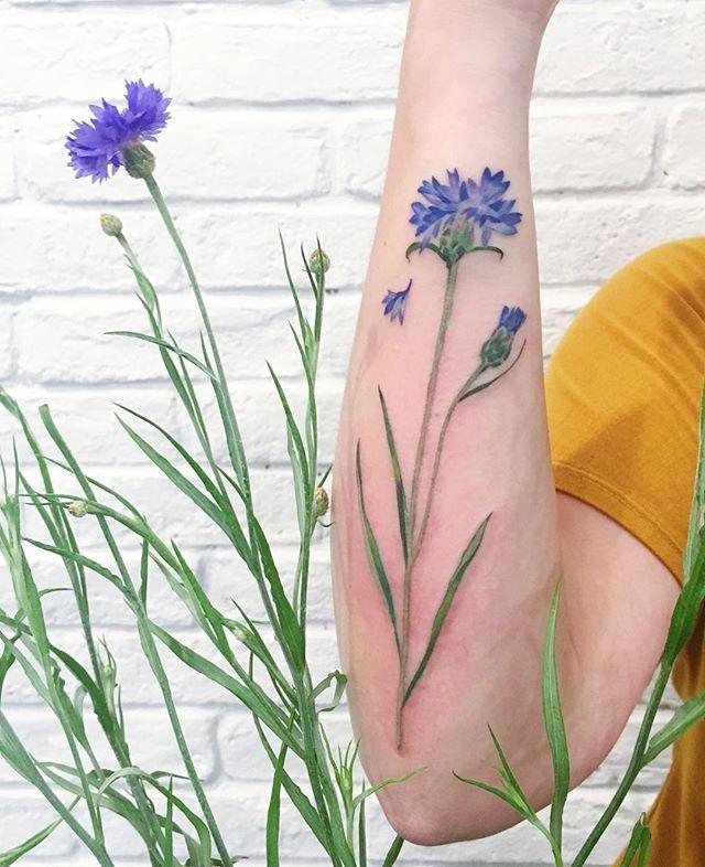 29708b55629d9 cornflower tattoo, make with real plant #liveleaftattoo #tattrx #cornflower…