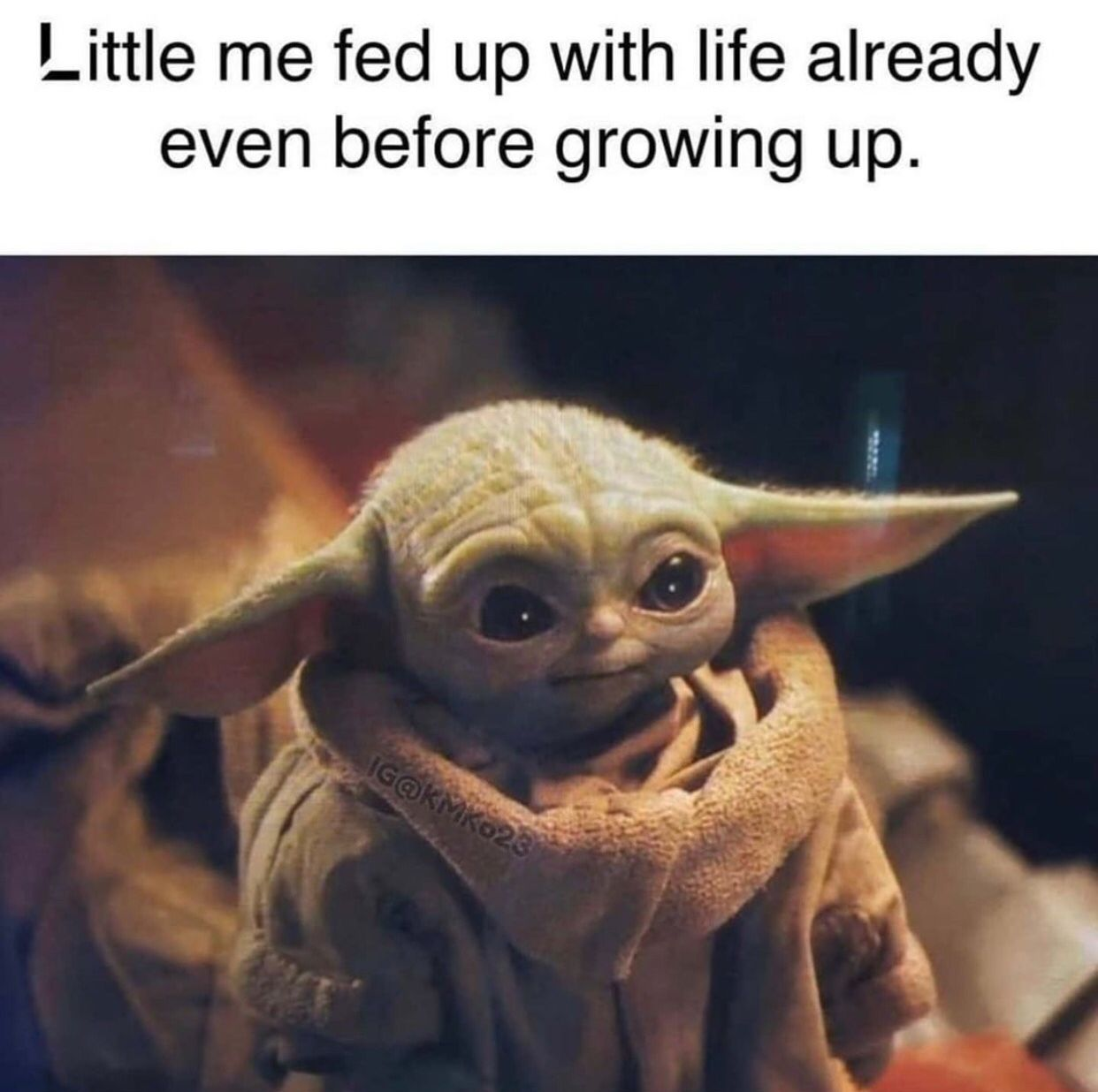 Pin by Rylie Marie on Baby yoda in 2020 Yoda meme, Funny