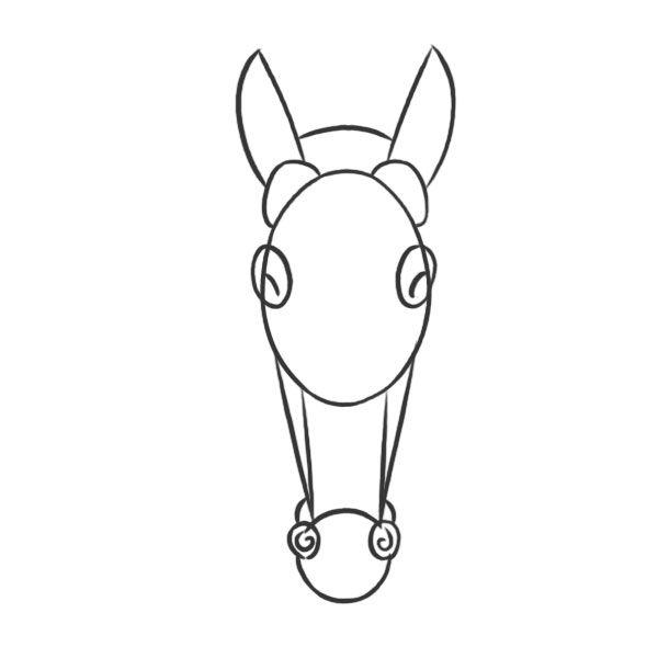 Volumes principaux d 39 une t te de cheval face dessiner - Dessiner tete de cheval ...