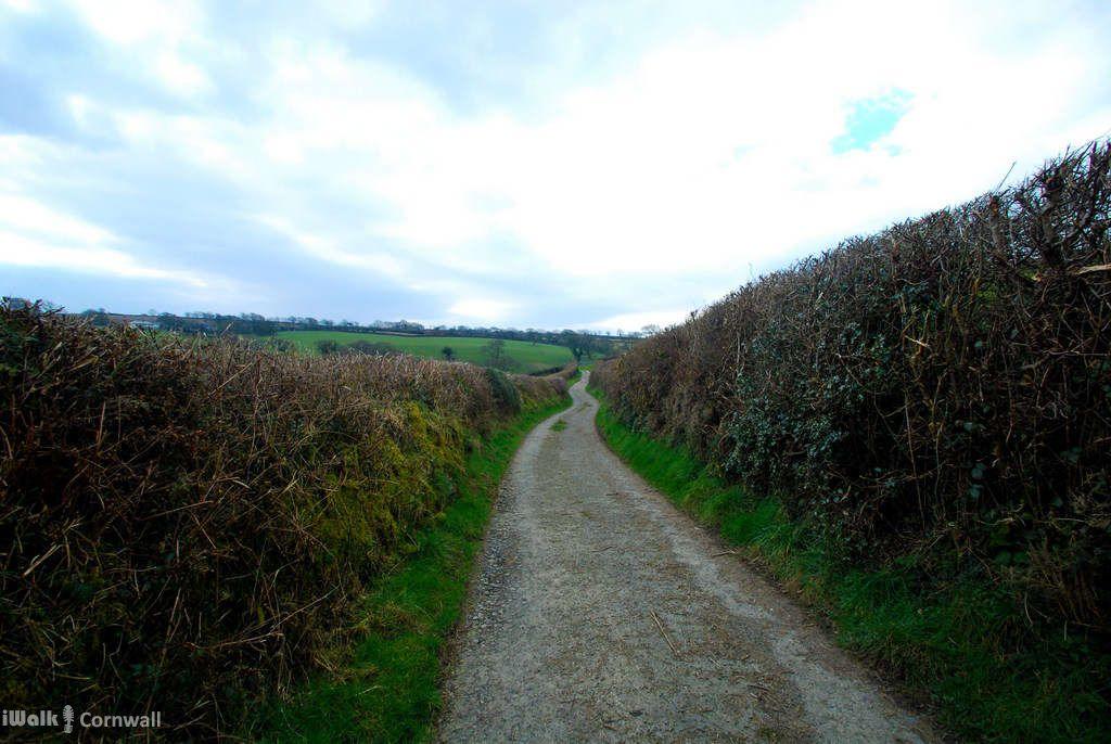 Lane near Tresmeer, North Cornwall