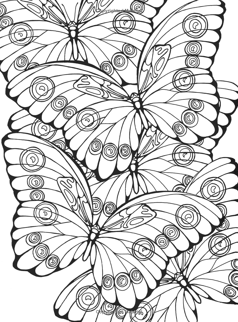 Designs For Coloring Butterflies Ruth Heller Butterfly