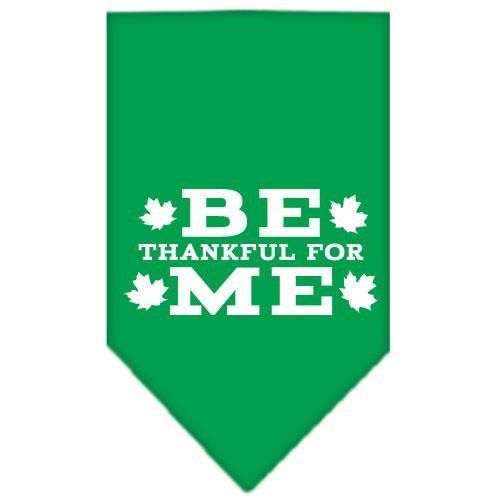 Be Thankful for Me Screen Print Bandana Emerald Green Small