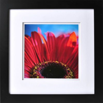 12x12 gallery frame with 8x8 double float mat large at michaels for the home pinterest - Michaels 12x12 Frame