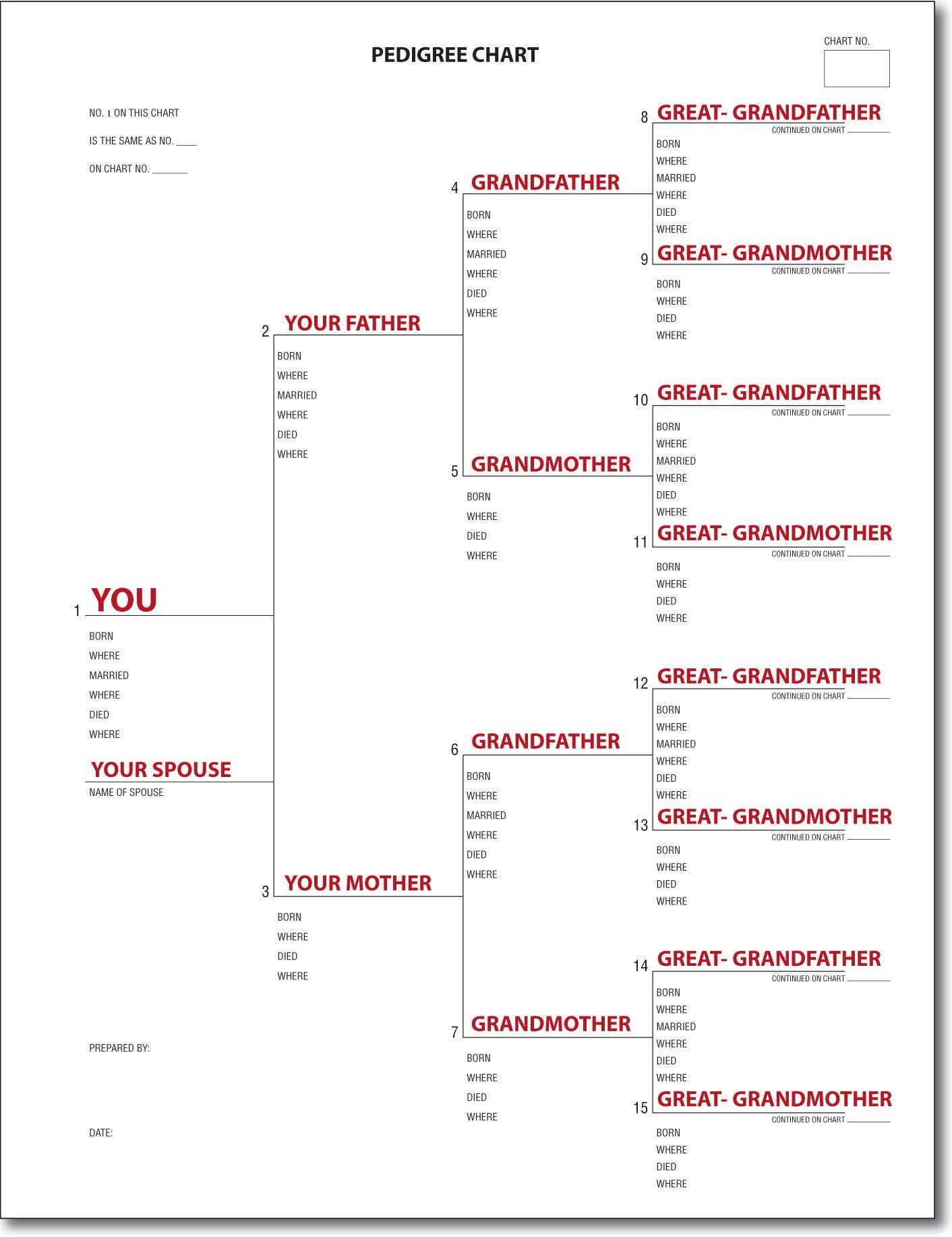 A Pedigree Chart