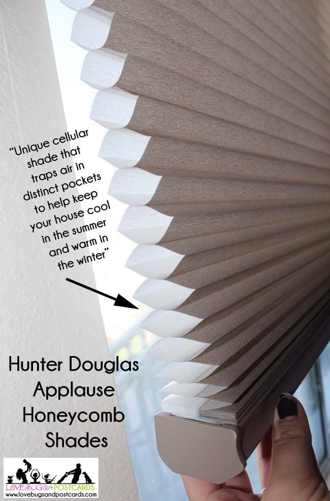 Hunter Douglas Applause Honeycomb Shades Review Lovebugs And Postcards Honeycomb Shades Hunter Douglas Hunter Douglas Blinds