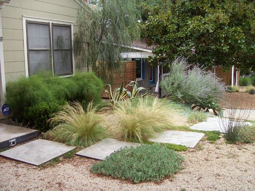 Great Mix Of Colors Height And Textures Backyard Landscaping Xeriscape Landscaping Austin