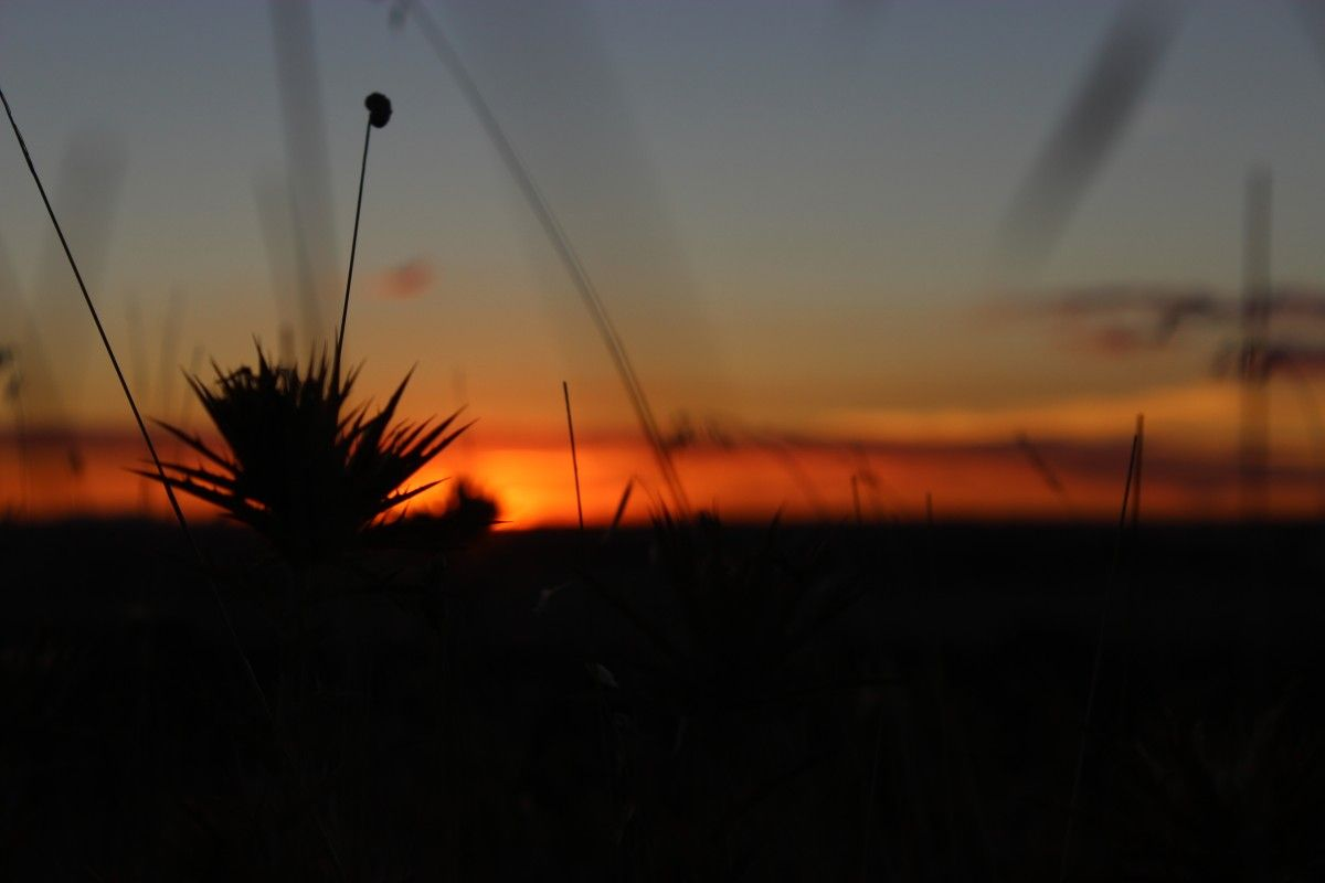 Puesta de sol – Tiempo entre los dedos