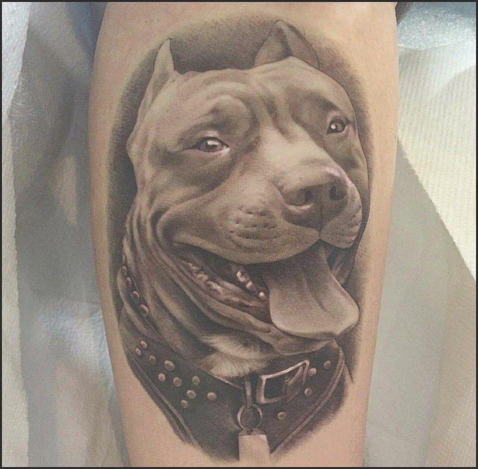 Dog Tattoo  Cute Dog Tattoo Ideas For Men Who Loves Dogs  Tattoo