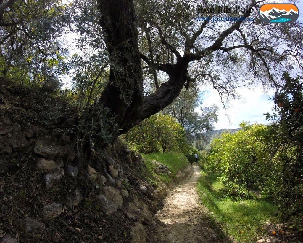 Quien quiere llegar busca caminos, quien no quiere llegar busca excusas #senderismo...