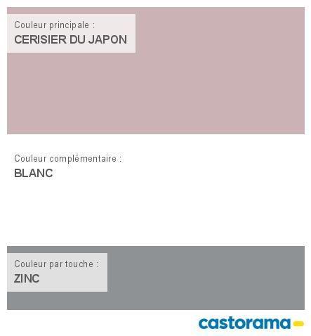 Castorama Nuancier Peinture - Mon harmonie Peinture CERISIER DU ...