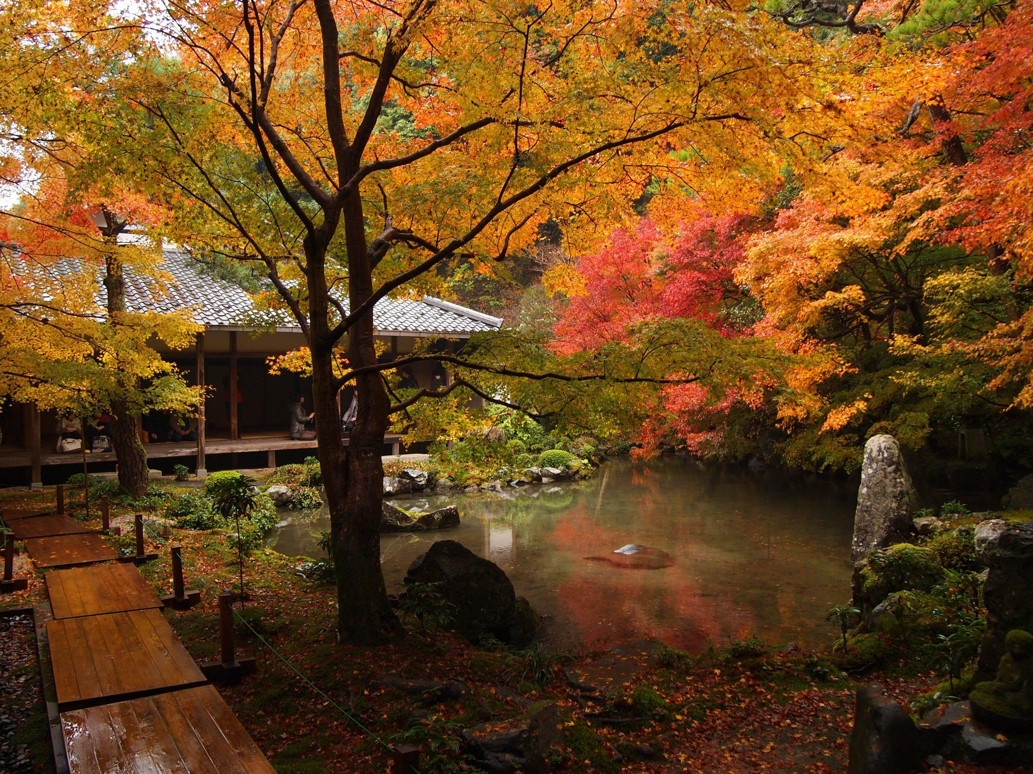 Rengeji temple@Kyoto, Japan by (Promenade in Kyoto) | autumn ...