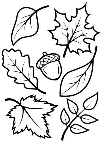 Fall Leaves Coloring Pages Fargelegging Host Blatt