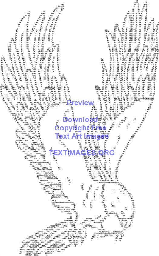 Bird Hawk Wings Species Fly Feathers Flying Ascii Art Hawk Wings
