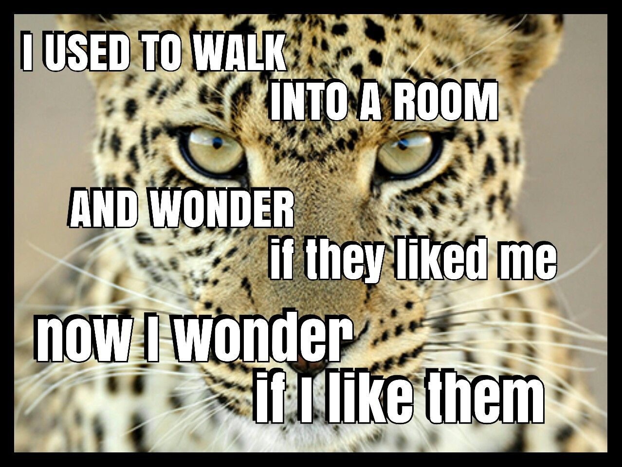 I used to walk into a room and wonder if they liked me. Now I wonder if I like them.