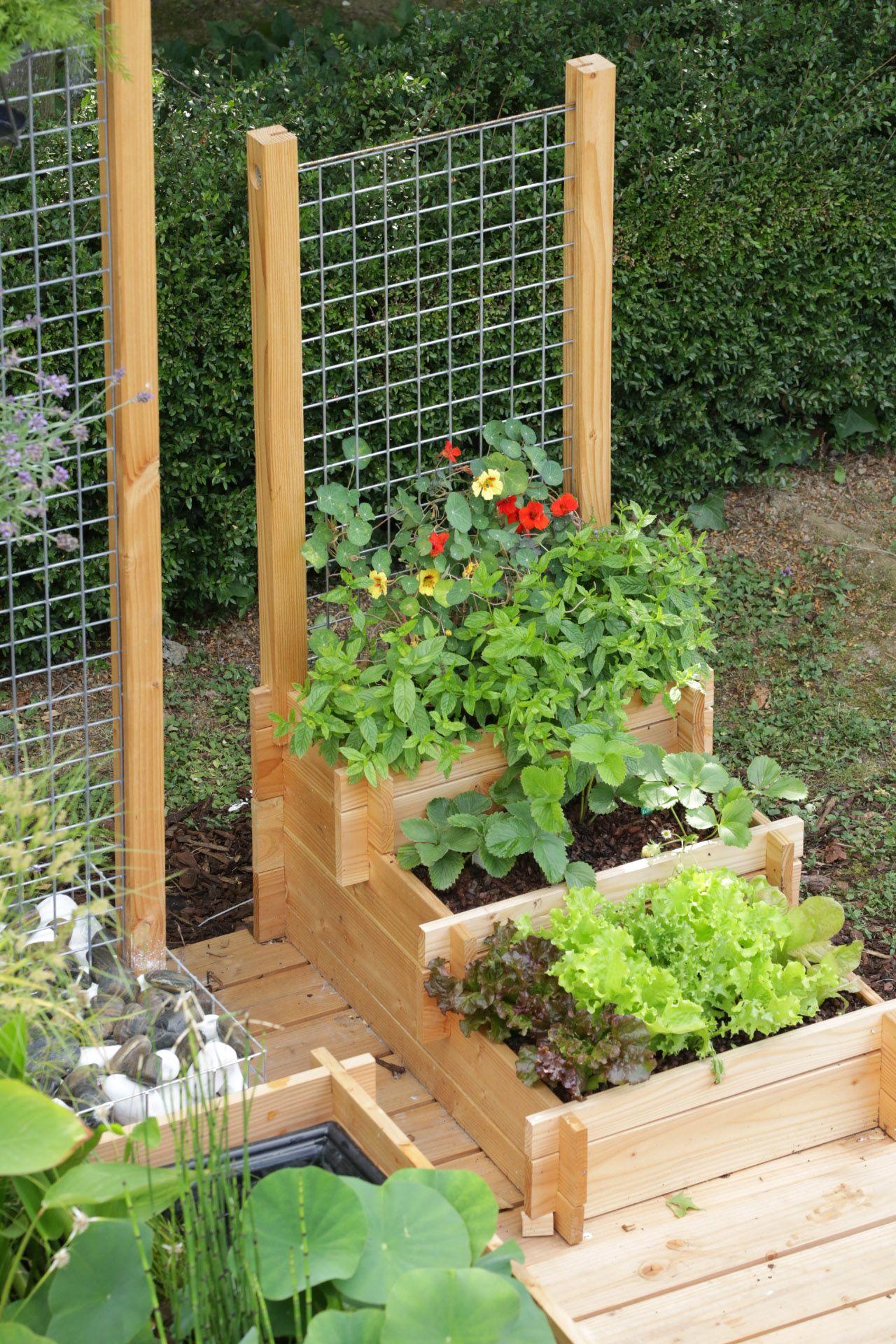Potager 3 Etages Botanic potager 3 étages 90 x 60 cm avec treillis / planter