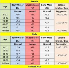 Everything about muscle mass percentage with charts fitness