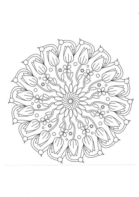 zentangle tulip patterns - yahoo image search results