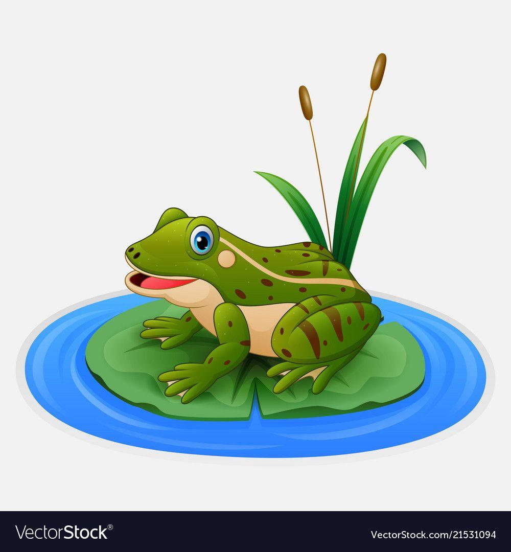 Green Frog Sits On A Leaf In The Pond Vector Image On Vectorstock Frog Illustration Animated Frog Frog Cartoon Images