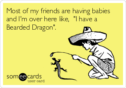 Most Of My Friends Are Having Babies And I M Over Here Like I Have A Bearded Dragon Bones Funny E Cards Humor