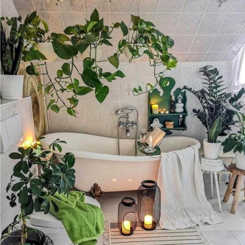 HAVEN ALERT The Ultimate Zero Waste Bathroom In 7 Steps is part of Boho bathroom decor, Affordable home decor, Cheap wall decor, Vintage bathrooms, Boho bathroom, Trending decor - Zero Waste Bathroom Build your perfect bathroom & achieve those bathroom goals in 7 easy steps