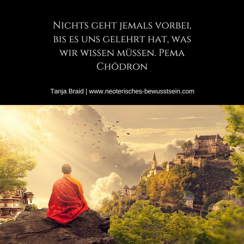 Spruch Zitat Pema Chodron Spirituelle Zitate Spruche