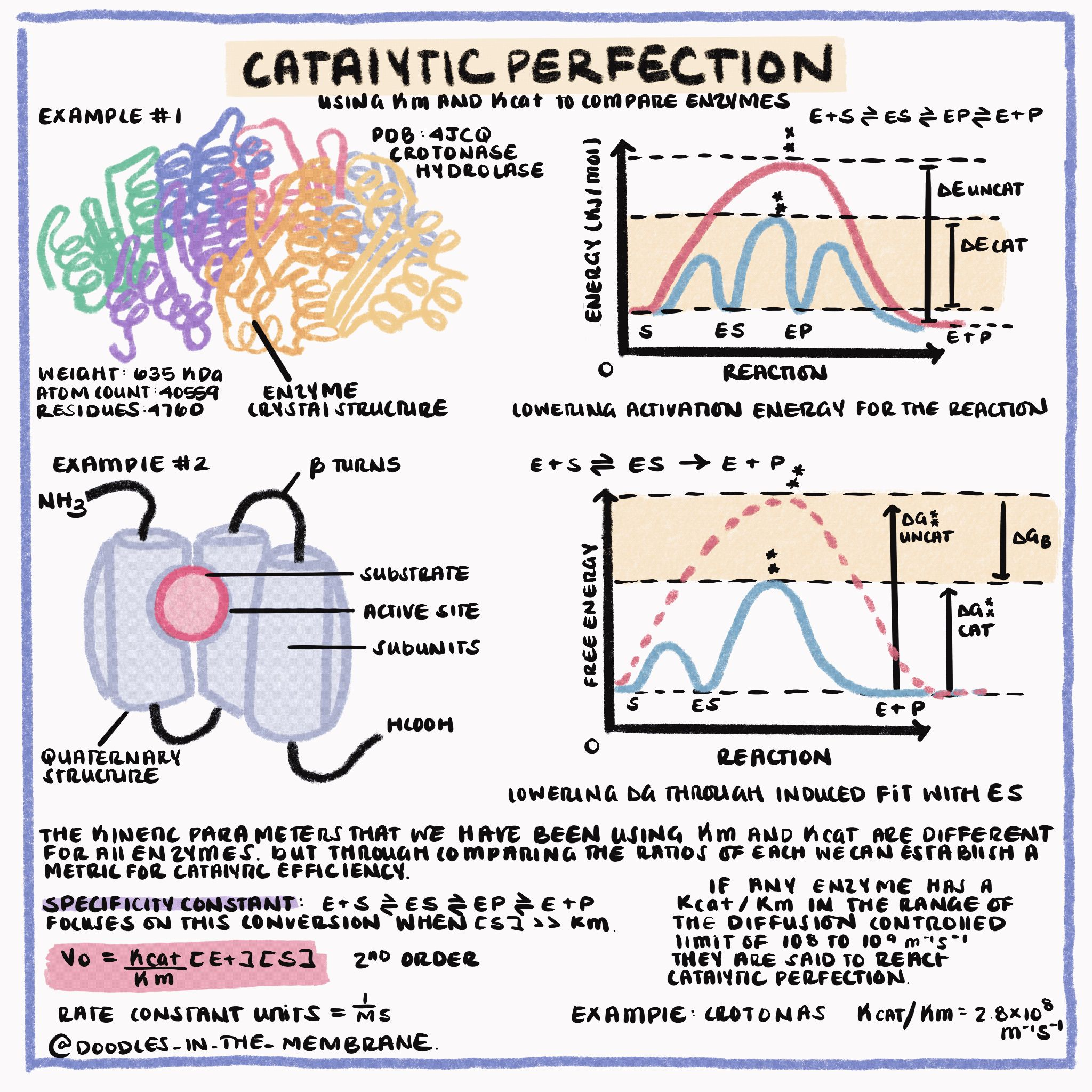 Catalytic Perfection In