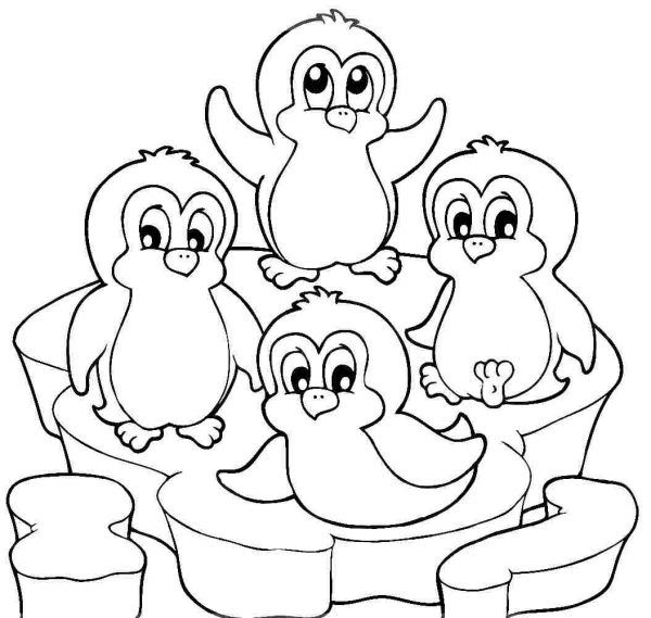 Christmas Penguin | Penguin coloring pages, Penguin coloring ... | 569x600