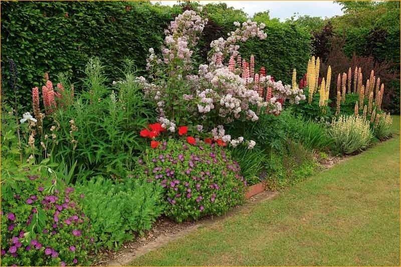 44 Pretty Cottage Garden Border Ideas Cottage Garden Borders