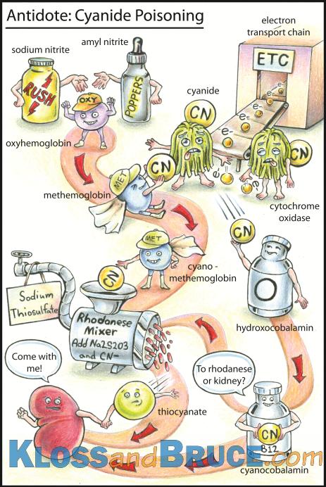 Kloss and Bruce Cyanide Antidote | Emergency Medicine #FOAMed ...