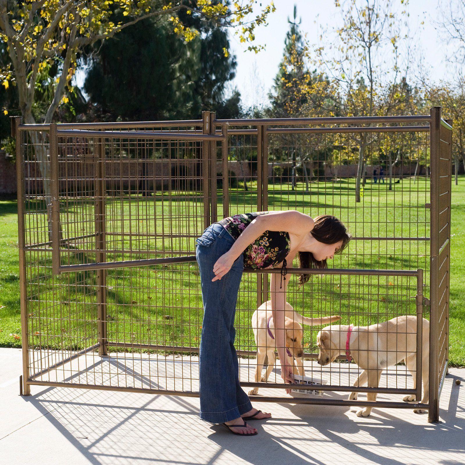 Advantek Modular Outdoor Dog Kennel from hayneedle