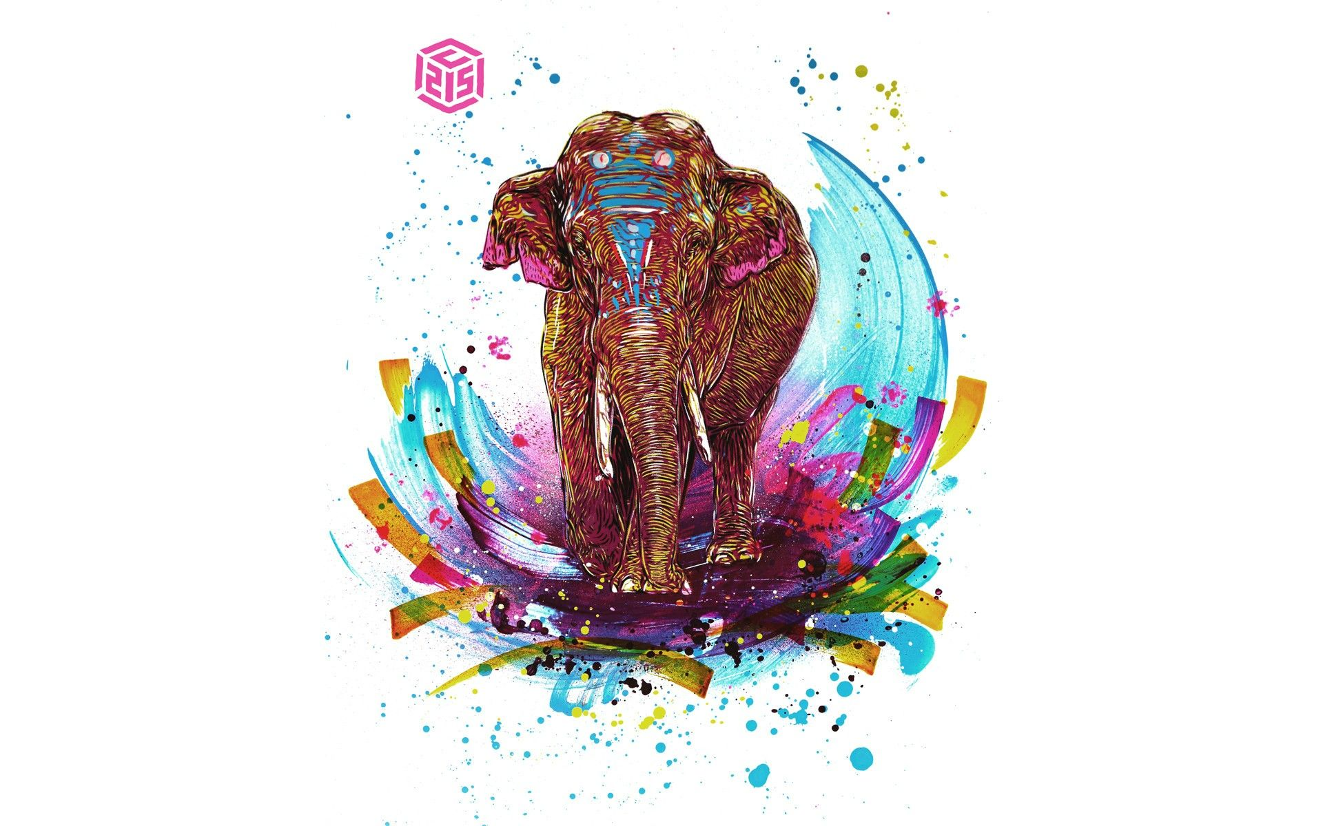 elephant wallpaper collection for free download hd wallpapers pinterest elephant wallpaper elephant background and wallpaper