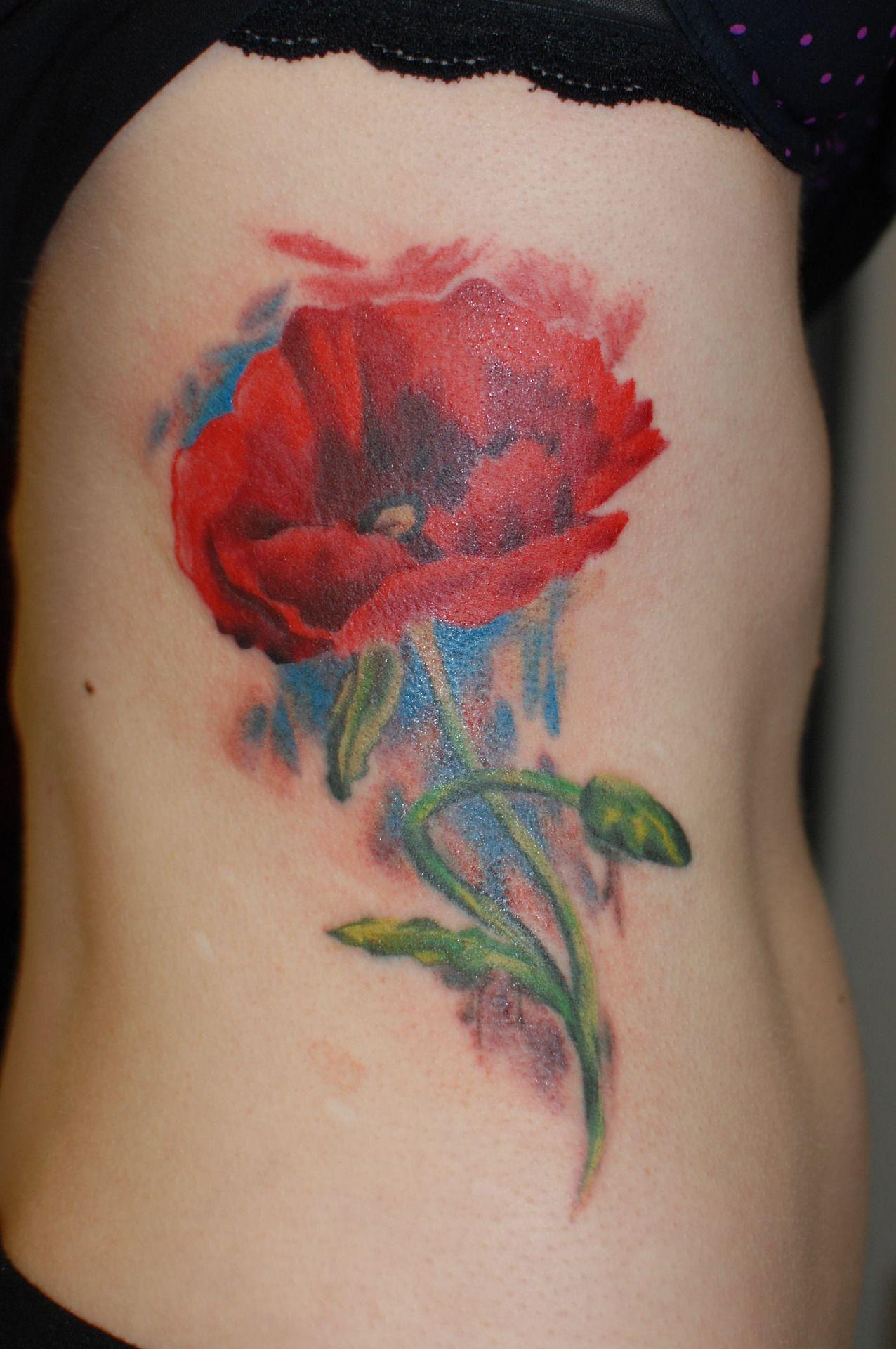 Poppy flower by ruslan moshkin at hammersmith tattoo absolutely