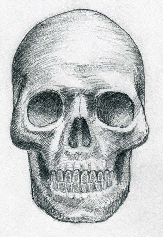 Line Art Skull : Skull line art click the image to enlarge halloween