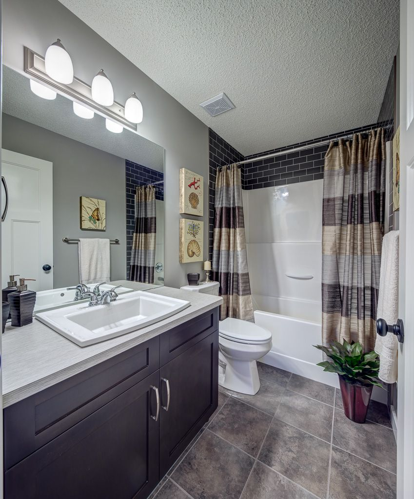 We figure out which ceiling is best done in the bathroom