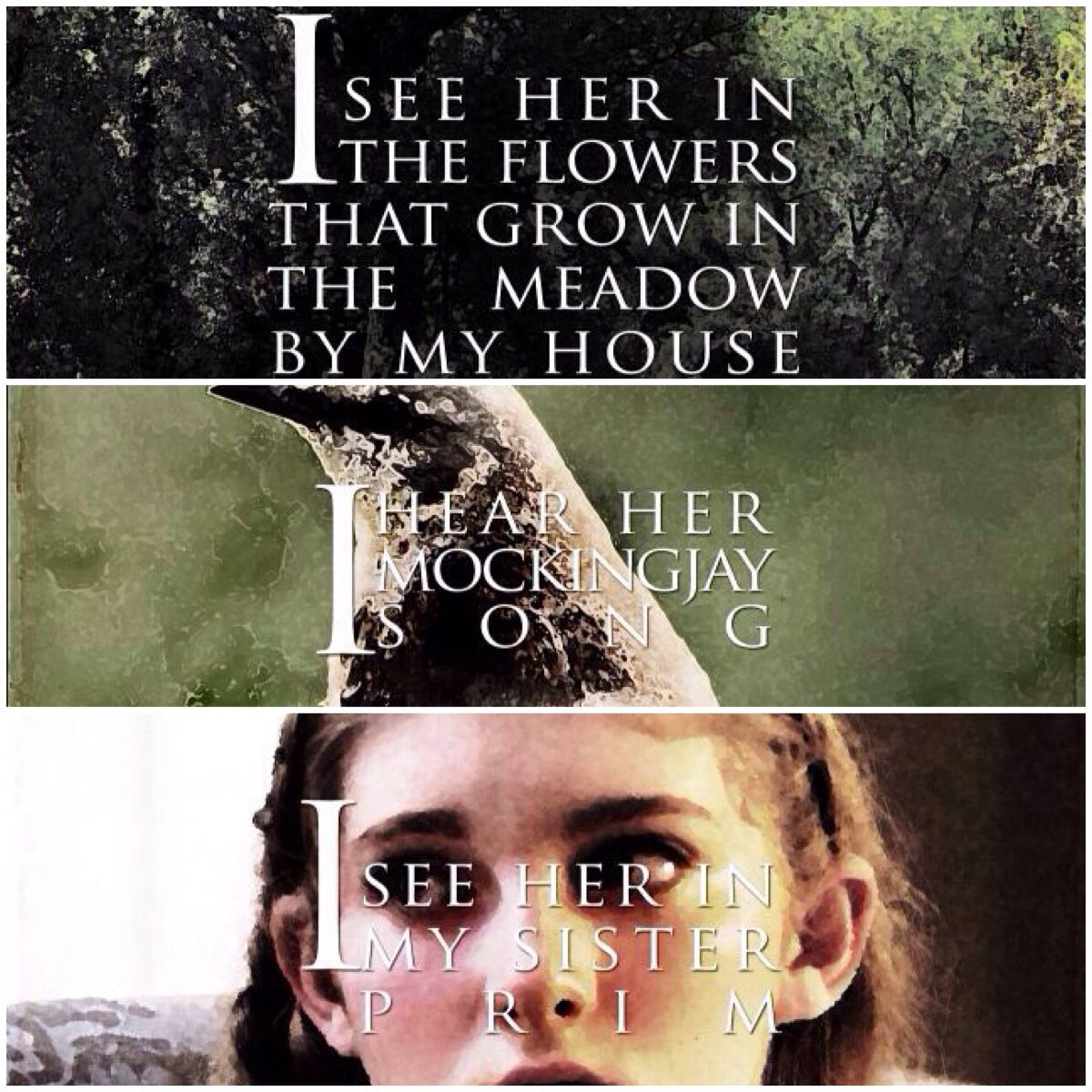 Hunger Games Quotes Katniss