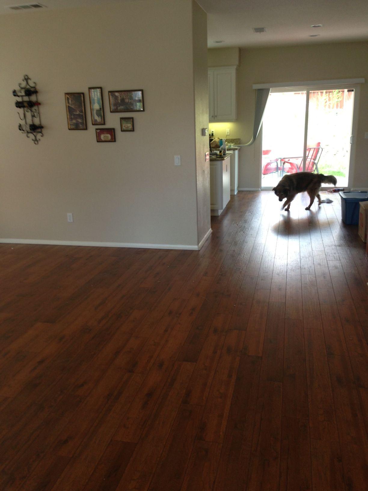 Shaw 12mm laminant flooring; Hickory color