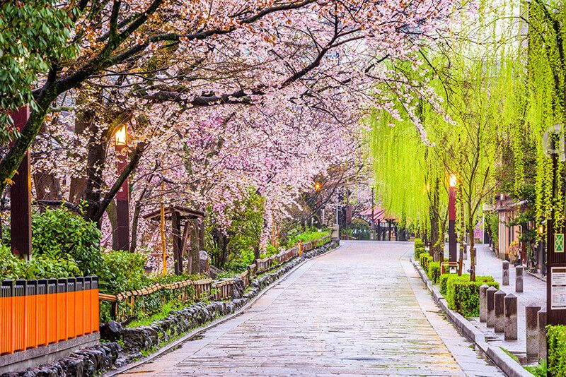 Explore Iconic Japanese Destinations In Kyoto And Beyond With World Famous Travel Photographer Trey Ratcliff And Th Photography Journey Japan Caribbean Culture