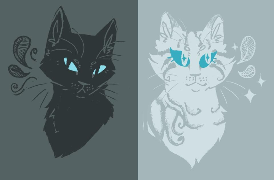 Crowfeather and Feathertail