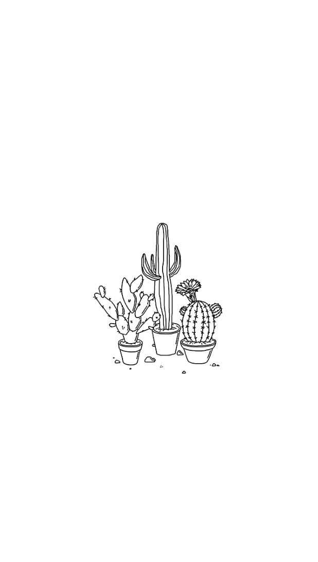 Wallpaper Cactus White Black Lines Illustrated Simple