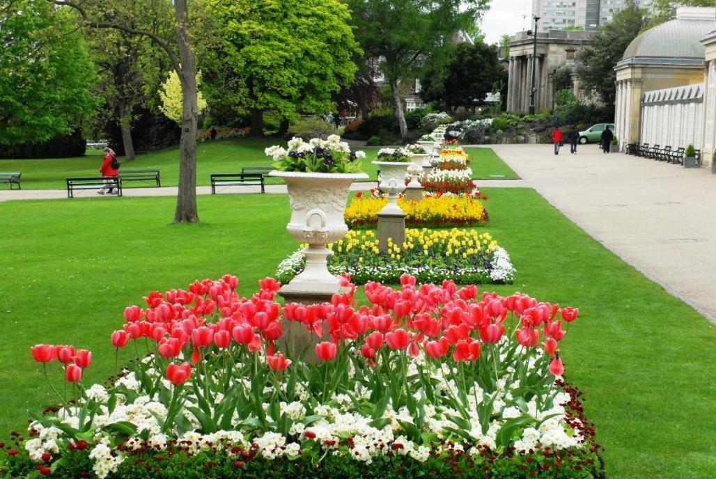 Gambar Taman Bunga Tulip Di Eropa Places To Visit Pinterest