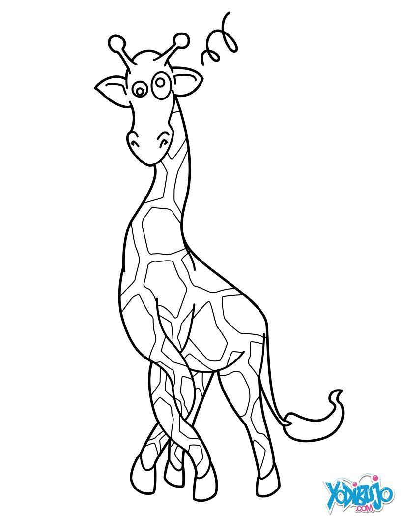 Dibujo para colorear : Jirafa con las piernas enredadas | iPhone ...