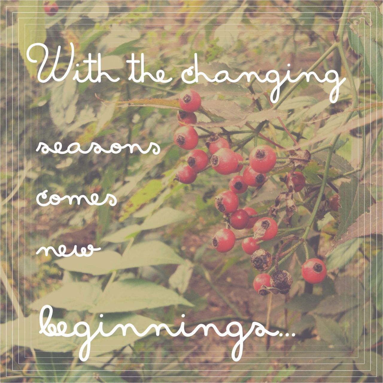 With The Changing Seasons Comes New Beginnings Quote Text